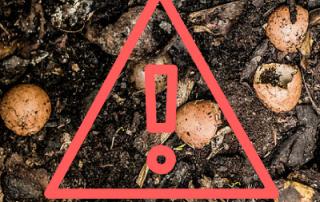 composting disaster