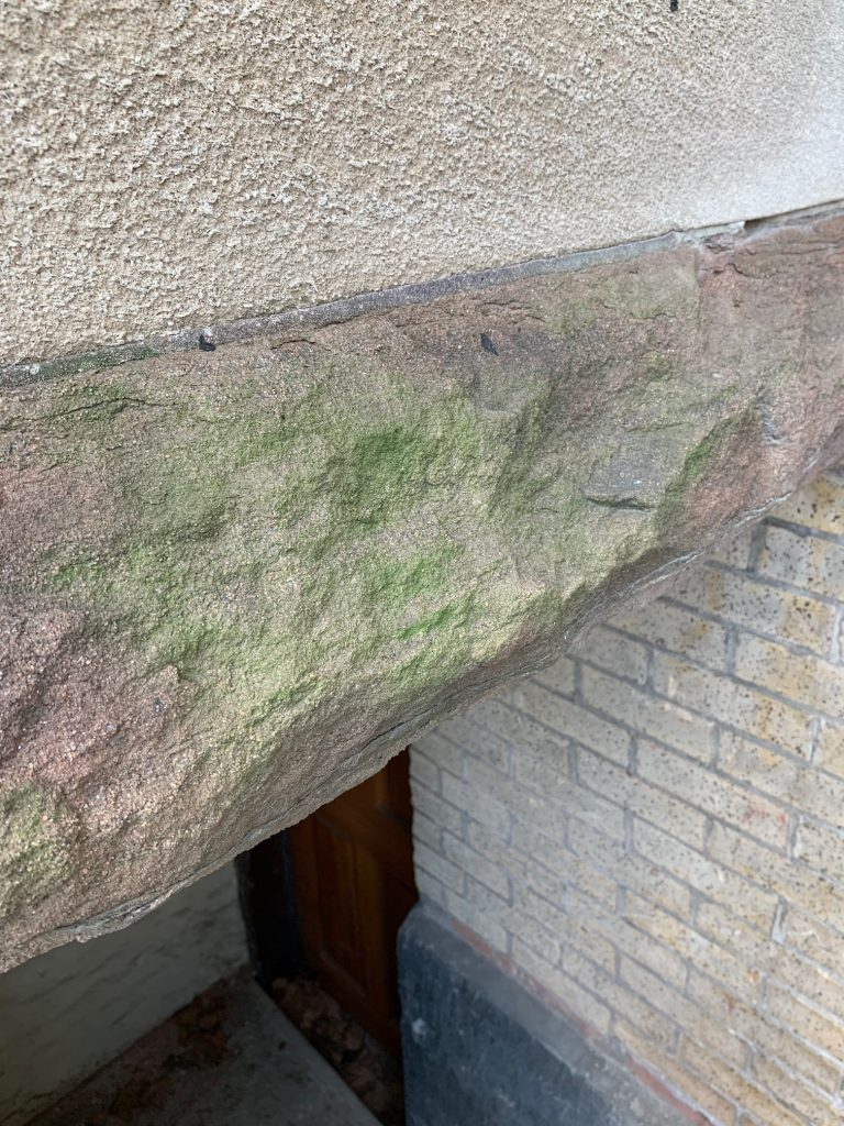 How to remove mold or mildew from concrete or stone