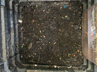 compost disaster