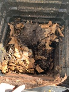 carbon in a compost bin